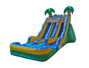 17 Tropical Dual Waterslide Bouncer Kernersville,  Dual Lanes, Inflatable Slide, Water Fun, Waterslide